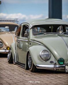 🤤🤤🤤 #vwestspring #vw #volkswagen #vwbug #beetle #ゴキゲンワーゲン #フォルクスワーゲン #aircooled #aircooledvw #fuscavolks #ovalwindow #photography #vwbus…