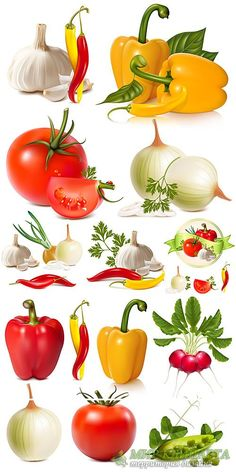 Fruit And Veg, Fruits And Vegetables, Vegetable Pictures, Food Graphic Design, Food Clipart, Food Drawing, Fruit Art, Food Illustrations, Fish And Seafood