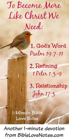 To become more like Christ, we don't simply need more education, polishing or religion...we need God's Word, refining and relationship. This 1-minute devotion explains.