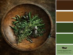 sage, rosemary and thyme. Dan Routh Photography sage, rosemary and thyme. Dan Routh Photographysage, rosemary and thyme. Spices And Herbs, Fresh Herbs, Aromatic Herbs, Medicinal Herbs, Parsley, Herbalism, The Cure, Photography, Witchcraft