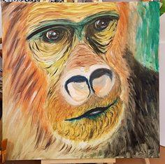 Opica - knihovník TP
