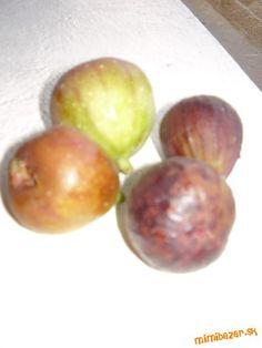 Figovy džem