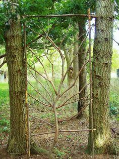 arbre de treillis par Frank Leahy, créant une frontière, une porte, un coin spécial .... - Jardins du jour