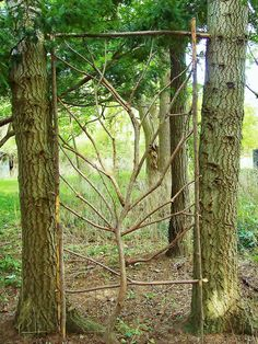 trellis tree ... would love to do something like this in the garden