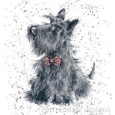 Wrendale Designs by Hannah Dale Scottie Greeting Card - Set of Three Terrier Dogs, Cairn Terrier, Scottish Terriers, Animals And Pets, Cute Animals, Wrendale Designs, Dog Cards, West Highland Terrier, Illustrations