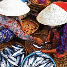Fish market in Vietnam. Courtesy of APT.