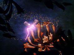 sugar plum fairy fantasia - Bing Images