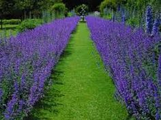 Image result for english garden