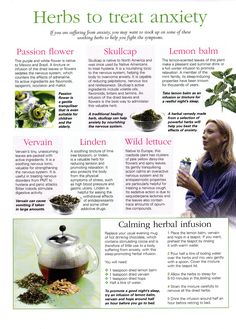 Herbs: Herbs to Treat Anxiety