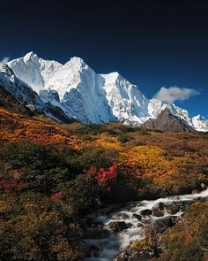 Autumn in Karta Valley in the Himalayas of Tibet, China