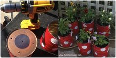 How to make your own children's garden by recycling baby formula tins