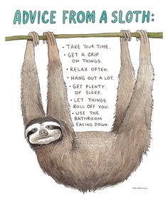 Sloth Art Print Advice from a Sloth a Humorous by DrawnFromMyBrain
