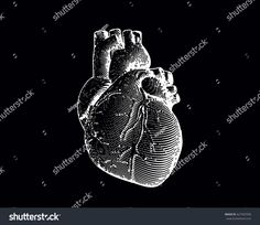 Engraving human heart illustration isolated on black background with negative effect