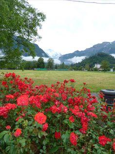 Interlaken Beauty