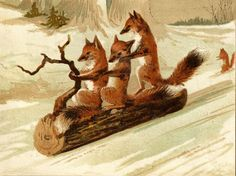 foxes on a log...vintage