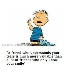 A friend who understands your tears is much more valuable than a lot of friends who only know your smile.