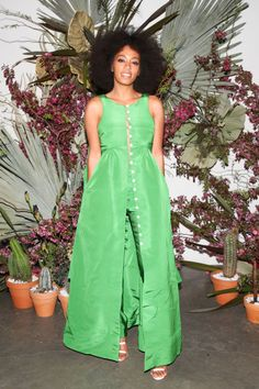 Solange Knowles at the Pioneer Works Vilage benefit party:
