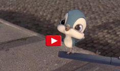 """Il primo volo"". Cortometraggio da non perdere. Pixar, Activities For Kids, Crafts For Kids, Hedgehog Pet, Dreamworks, Pet Care, Cinema, Mindfulness, Coding"