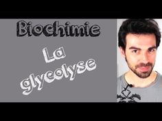 Cours de biochimie: Glycolyse - YouTube