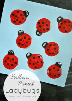 Ladybird crafts and activities - balloon printing.