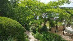 Maison à vendre - 7 pièces - 198 m2 - DOLE - 39 - FRANCHE-COMTE Plants, Flora, Planters