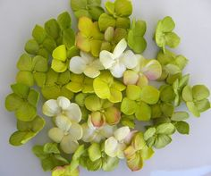 Edible Cupcake Topper Sugar Hydrangea Singles by ModernLuxeEvents, $29.50