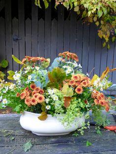 autumn bouquet with bronze flowers