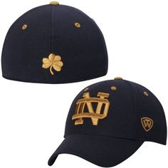 Notre Dame Fighting Irish Top of the World Dynasty Memory Fit Fitted Hat – Navy Blue
