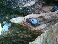 غار آبی تاریخی سهولانیکی از مهمترین و کم نظیرترین غارهاى طبیعی ایرانو از شگفتانگیزترین جلوه هاى طبیعت زیباى استان آذربایجان غربی بشمار میرود