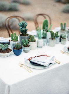 Cactus Tablescape. V