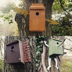 Unique bird boxes designed by @uninorthants students in their final locations on the Brampton Valley Way #Birdbox #BramptonValleyWay #Sustrans #NationalCycleNetwork #NCN #NCN6 #LaserCutting by sustransuon