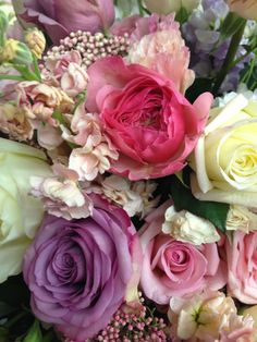 Love the bright pink of these Yves Piaget garden roses