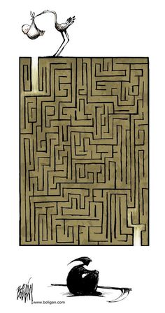 The maze of life.