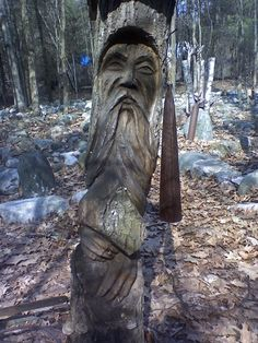 old man tree carving---Colchester, Vermont