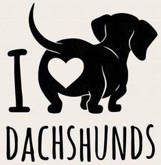 Dachshund Quotes, Dachshund Shirt, Dachshund Gifts, Funny Dachshund, Dachshund Puppies, Weenie Dogs, Daschund, Dachshund Love, Dapple Dachshund
