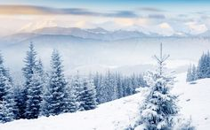 snow scenes in colorado panoramic view | 2013 Kirk Ouimet Design . All rights reserved. Dedicated Hosting by ...