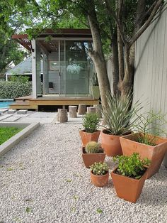 I think I like the idea of white stones leading up to the cubby house. Teracotta pots are also cute