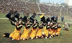 the steelers used to have cheerleaders! Cheerleading Pictures, Cheerleading Uniforms, Pittsburgh Steelers Cheerleaders, Nfl Football, Greg Lloyd, Steelers Images, City Super, Troy Polamalu, Cheerleader Costume