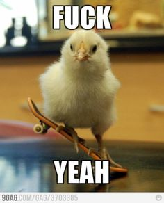 Chicks can skate too, your argument is invalid.