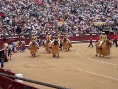 http://ift.tt/2oF1FLC during bullfighting the ability for a matador to deliver the final thrust of a sword into the bull's aorta is highly judged. If unsuccessful the dishonored matador then must sever the spinal cord and is booed off the arena.
