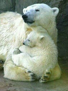 Sweet motherly embrace