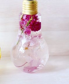 Enchanting Flowers Suspended in Light Bulbs Glisten Like Precious Jewels