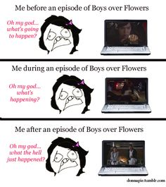 Boys over flowers. Add to this confusion from translation errors in the subtitles...Yep, that about sums it up.