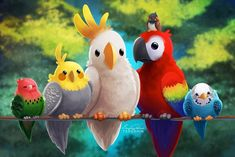 A este loro le gastaron una broma pesada, pero no todo salió como pensaba el bromista. Funny Birds, Cute Birds, Cute Animal Drawings, Bird Drawings, Bird Mom, Cute Dragons, Bird Illustration, Kawaii Art, Animal Paintings