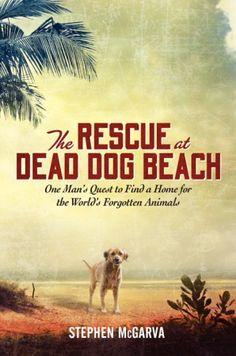Hell dogs Puerto Rico on Dead Dog Beach - Animal Cause - Wamiz