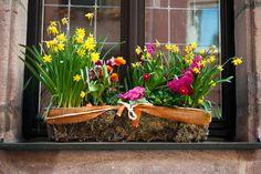 41 besten garten balkon terrasse ideen pflanzen kr uter und alles was spa macht bilder. Black Bedroom Furniture Sets. Home Design Ideas