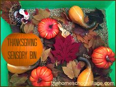 In some ways, this year's Thanksgiving Sensory Bin is similar tothe one we made last year but I guess there are only so many ideas I have for this theme!For this year's Thanksgiving Sensory Bin, I used dry lentils as the base and added felt leaf shaped coasters, fake fall leaves, plastic gourds and plastic …
