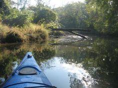 Piscataway Creek, MD Charles County Md, Ancestry, Kayaking, Maryland, Kayaks, Genealogy