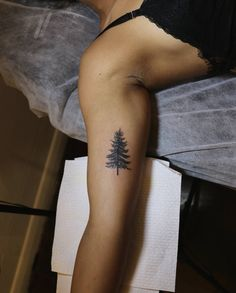 "21 Likes, 3 Comments - VAMP BODY ART (@vampbodyart) on Instagram: ""Pinea abies (Noway spruce pine tree) • Tattoo by @roxtattoo #treetattoo #pinetree #tattooedladies…"""