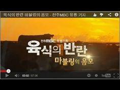 ▶ 육식의 반란 마블링의 음모 - 이달의 방송기자상, 전주MBC 유룡 - YouTube Pandora, Youtube, Youtubers, Youtube Movies